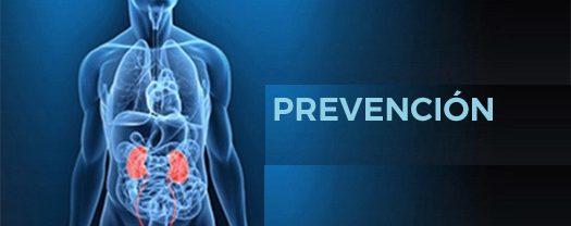 Enfermedades urológicas: Prevención en verano