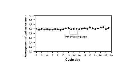 Testosterona y ciclo mestrual graficos