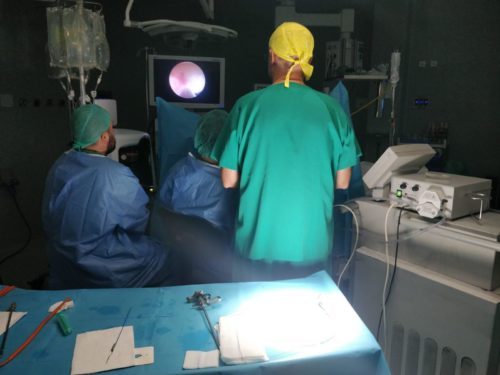 programa de enucleación prostática